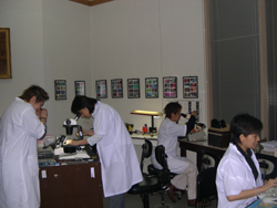 Experts traniners analyzing diamonds and colorstones at Adamas Gemology Laboratory